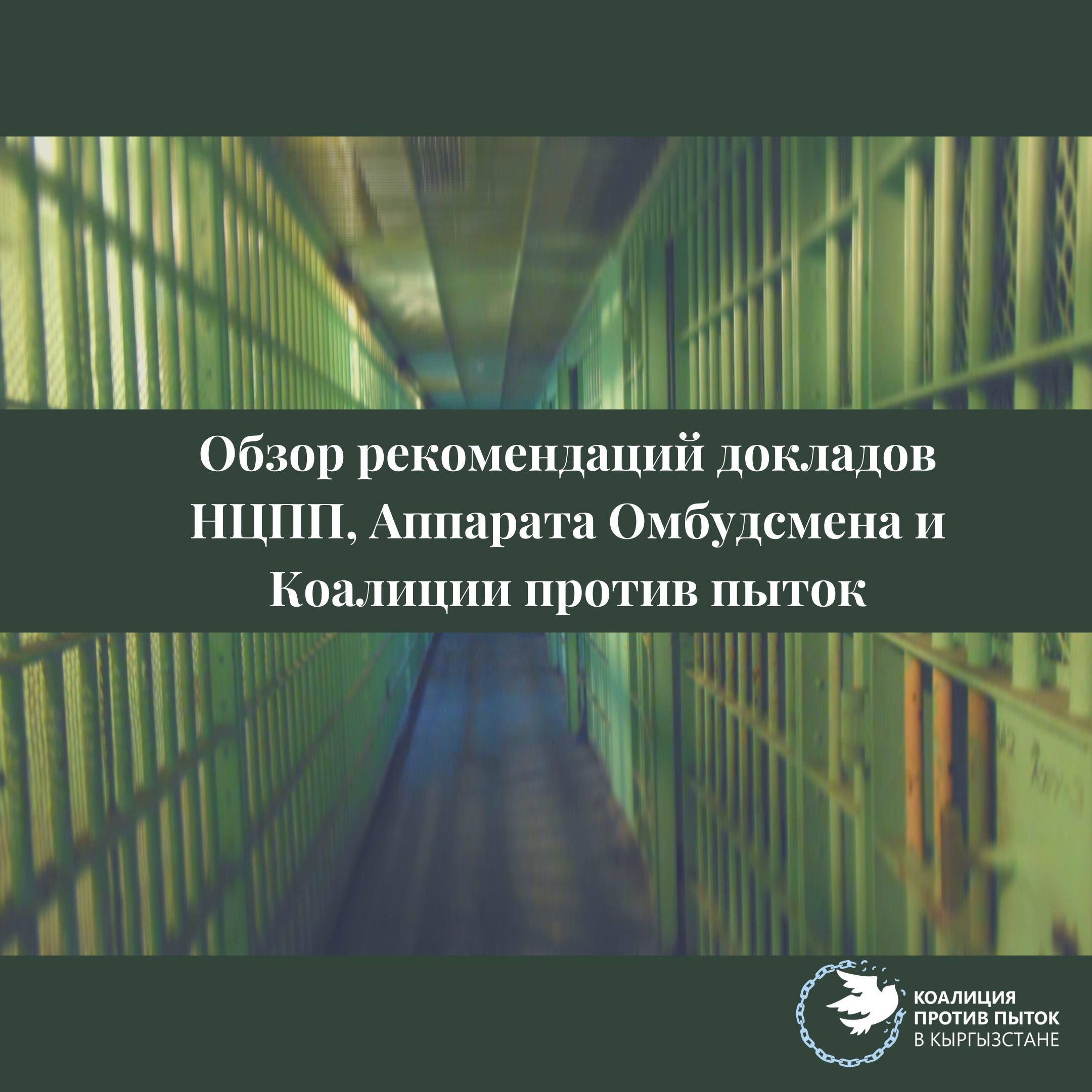 Обзор рекомендаций и докладов НЦПП, Аппаратов Омбудсмена и Коалиции против пыток